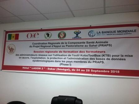 Première phase de la session régionale de formation des administrateurs et utilisateurs de l'outil KoboToolBox (KTB) pour la mise en oeuvre, l'exploitation, la protection et le contrôle des bases de données épidémiologiques dans le cadre du PRAPS àDakar, Sénégal du 24 au 28 Septembre 2018