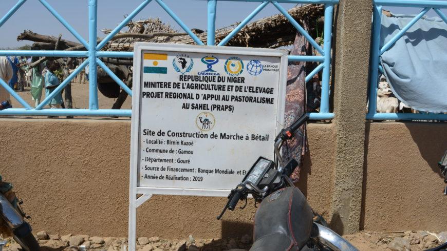 Marché à bétail PRAPS NIGER de Kazoe , département de Gouré dans la région de Zinder en animation