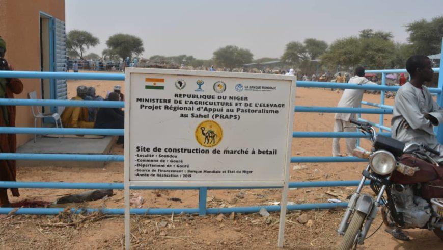 Marché à bétail PRAPS NIGER de  Soubdou , département de Gouré dans la région de Zinder en animation