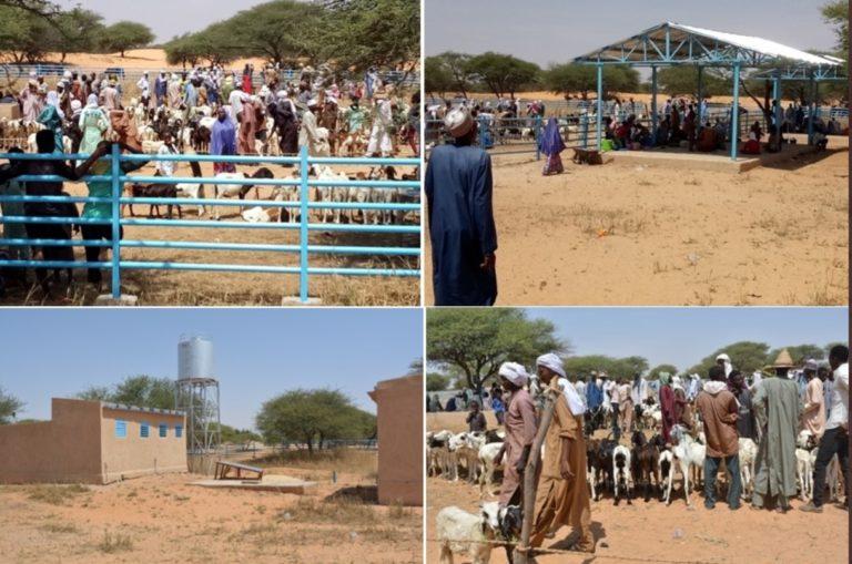 Marché à bétail PRAPS NIGER de Kilakam , département de Goudoumaria dans la région de Diffa en animation
