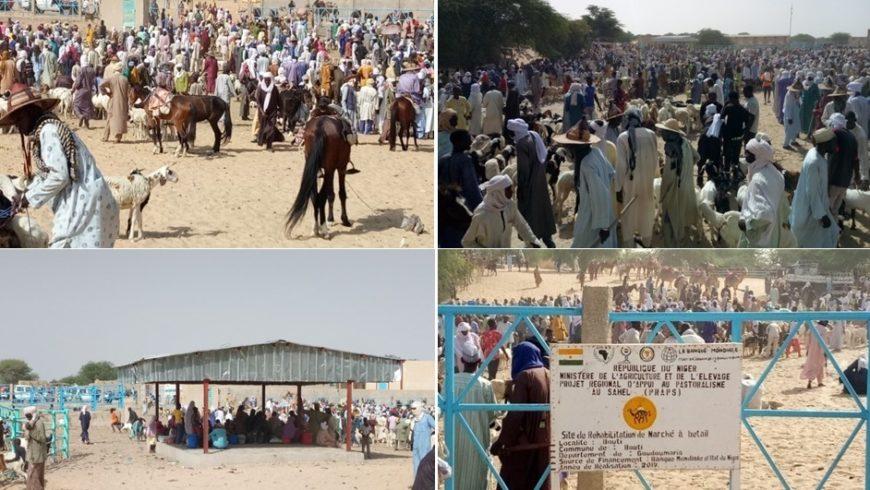 Marché à bétail PRAPS NIGER de Boutti , département de Goudoumaria dans la région de Diffa en animation