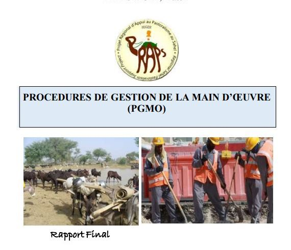 PROCEDURES DE GESTION DE LA MAIN D'ŒUVRE (PGMO)